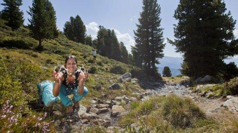 Jungbrunnen Tiroler Bergwelt